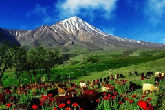 gruziya-gory